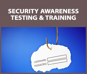 Security Awareness Testing and Training